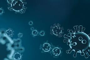 欧洲刑警组织追捕利用冠状病毒大流行的黑客